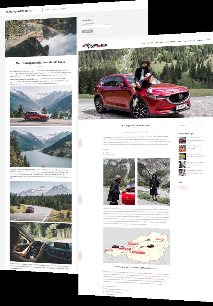 Mit unserer Plattform, die wir Pur Influencer nennen steht uns ein Marktplatz zur Verfügung auf dem sich Werbetreibende und Blogger finden.